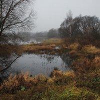 про осень :: sergej-smv