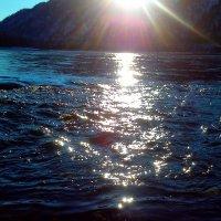 Блики солнца :: оксана