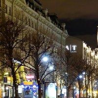 Большая Конюшенная улица :: Владимир Гилясев