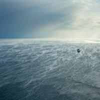 Ветер одиночества :: Владимир Куц