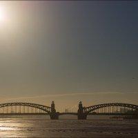 Большеохтинский мост. (мост Петра Великого) :: Сергей Еремин