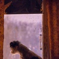 Одиночество :: Алексей Лишенков