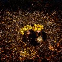 в гнезде :: Лана Lavin