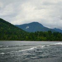 Телецкое озеро :: Роман Ковалев