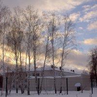 небольшая история прогулки :: Алексей Медведев