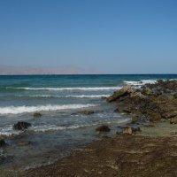 Индийский океан. Отлив. :: Чария Зоя