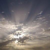 Солнце в облаках :: Николай