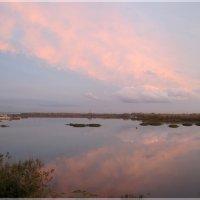 В розовых облаках заката :: nika555nika Ирина