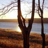 Начало заката :: Фотогруппа Весна.