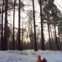 IMG_1018 - В Москве морозно, но не холодно :: Андрей Лукьянов