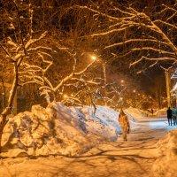 Вечерняя улица. :: Поток
