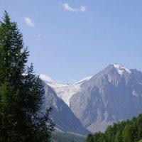 Пейзаж с иван-чаем :: Наталия Григорьева