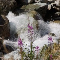 Весёлая речка Акташка :: Наталия Григорьева