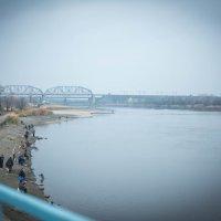Северский Донец (правый приток Дона) :: Mitrex .