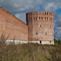Смоленская крепость. Башня Орёл (Городецкая) :: Алексей Шаповалов Стерх