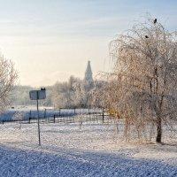 Впереди ещё метели и морозец утром ранним… :: Ирина Данилова