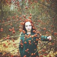 В яблоках... :: Дмитрий Кристиан