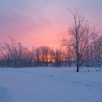 Только ранним утром видим мы рассвет. :: Алексей Хаустов
