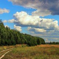 С трудом держало небо облака... :: Лесо-Вед (Баранов)
