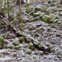 Зима.2015г. :: Eino Pessi