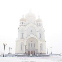 Всепоглащающий туман :: Людмила Мозер