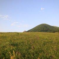 Цветочная поляна  вечером на весенних склонах г. Бештау. Завтра наступает лето! :: Vladimir 070549