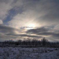 Зима. Начало нового дня :: Александр Резуненко