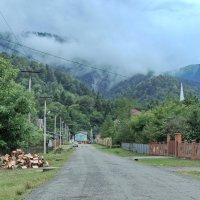 деревенская улица :: Алексей Меринов