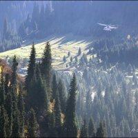 Вертолет в горах. :: Anna Gornostayeva