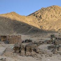 Брошенная бедуинская деревня :: Борис Гольдберг