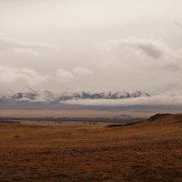 Северо-Чуйский хребет :: Кристина Воробьева