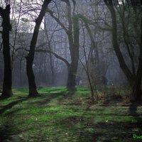 Парк Пионеров г. Новороссийск :: Виктор Дилянян