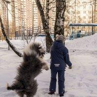 кто быстрее добежит? :: Лариса Батурова