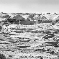 Где-то в пустынях Иордании. :: Алексей Окунеев