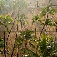 Просто красивый свет. Waikiki beach. Hawaii :: Sofia Rakitskaia