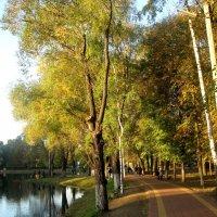 Осенний день в городе :: Елена Семигина