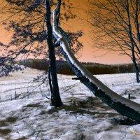 Зима :: Олег Фиедориенко
