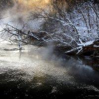 По течению...2. :: Андрей Войцехов