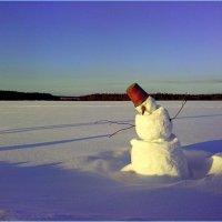Зимний пейзаж. :: Андрей Русинов