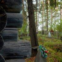 Туринское кладбище :: Борис Соловьев
