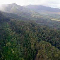 Ландшафт о-ва Оаху, Гавайи :: Sofia Rakitskaia