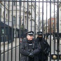 Английские полицейские. :: Елена