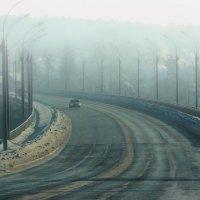 Западная Сибирь.... :: Елена Баландина