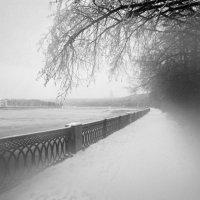 Воробьевы горы :: Дмитрий Ромашев