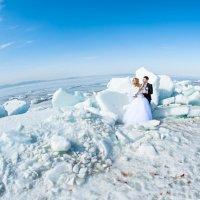 Зимняя свадьба :: Анастасия Стробыкина