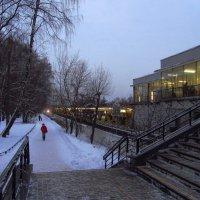 День прибавляется :: Андрей Лукьянов