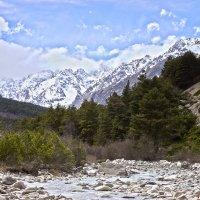 Граница гор Кавказа и Грузии :: Артём Федин