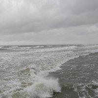 Янтарный шторм :: Олег Романенко