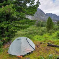 Треккинговая палатка под сибирским кедром :: Виктор Никитин