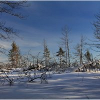 Зимняя сказка :: generalov545